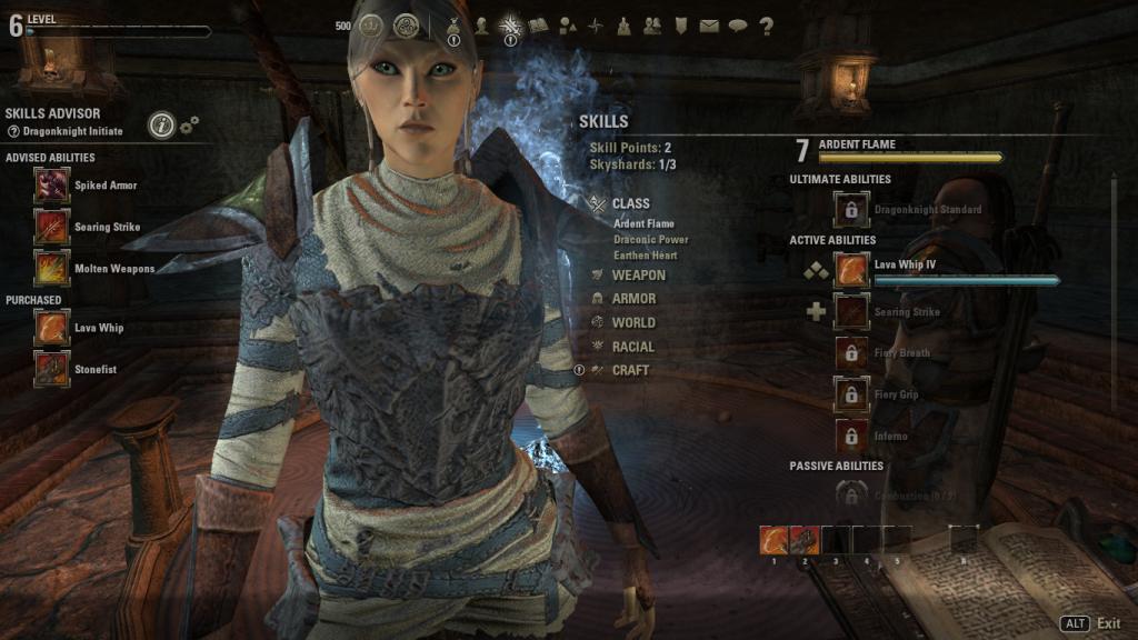 The Elder Scrolls Online - armatura